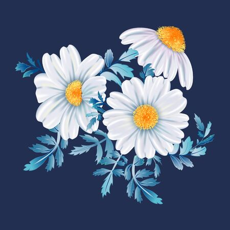 White chamomile flower bunch close up, on dark blue background. Vector floral illustration. Фото со стока - 142041281