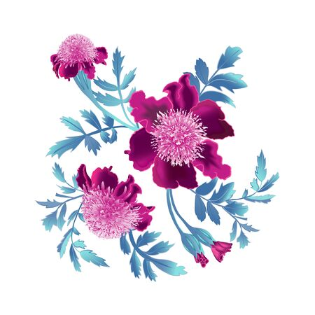 Bright colorful flowers bunch close up for your card design, isolated on white background. Vector floral illustration. Иллюстрация