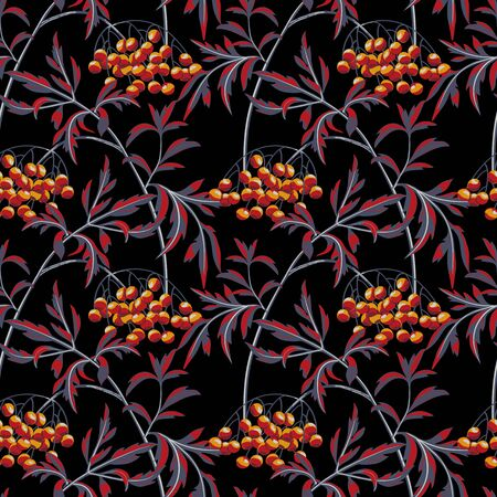 Black elderberry branch with berries and leaves on black background. Vector seamless pattern.