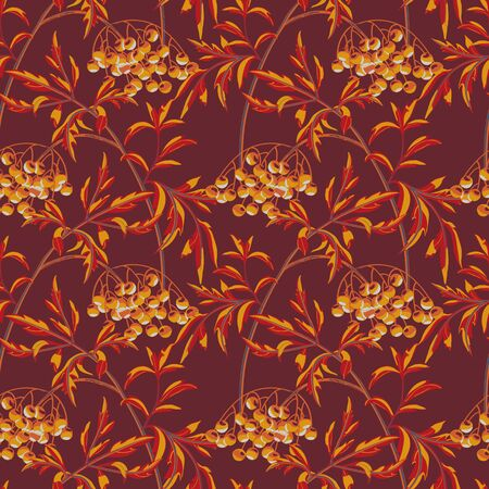 Black elderberry branch with berries and leaves on maroon background. Vector seamless pattern.