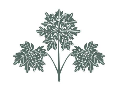 Logo lace geranium leaves. Flat design elements. Hand-drawn vector