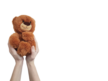 hand teddy toy isolated