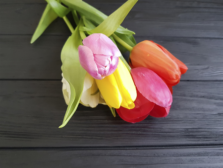 Tulips on black wooden, mourning, sadness, farewell Stock Photo