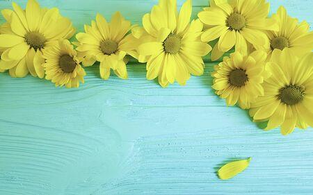 chrysanthemum yellow frame wooden background