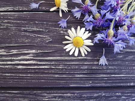 bouquet of cornflowers, chamomile on a black wooden background