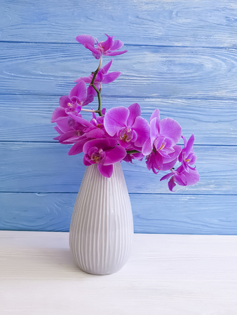 vase orchid on a wooden background