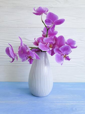 vase orchid flower on wooden background