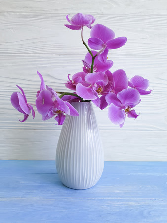 wazon storczykowy kwiat na drewnianym tle