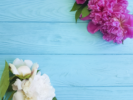 fresh flowers on a wooden background, summer frame