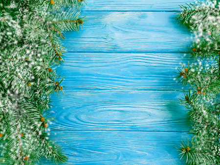 Christmas tree branch on blue wooden background