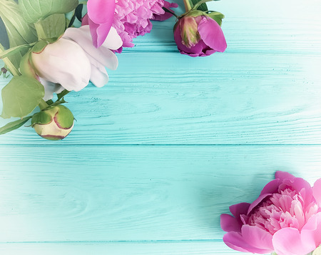 peony bouquet on blue wooden background vintage Stock Photo