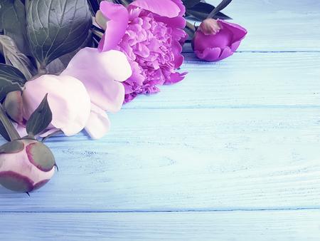 peony bouquet on blue wooden background vintage Фото со стока