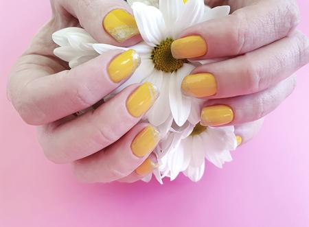 female hands manicure, chrysanthemum flower