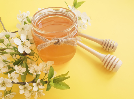 honey blooming cherry Banque d'images