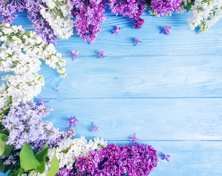 beautiful lilac flower on wooden background frame Reklamní fotografie - 122656617