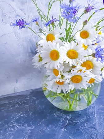 vase flower cornflower, daisy 스톡 콘텐츠