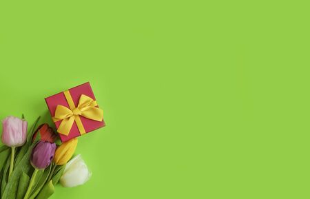 flower tulip gift box on a colored background frame Imagens