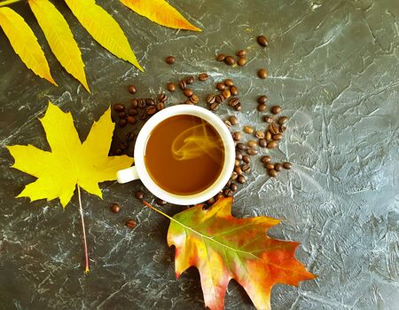 cup of coffee, autumn leaves on a concrete