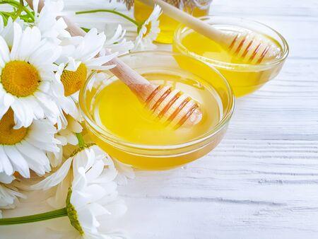fresh honey daisy flower 스톡 콘텐츠