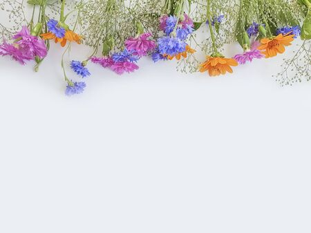 summer flowers frame on a white background