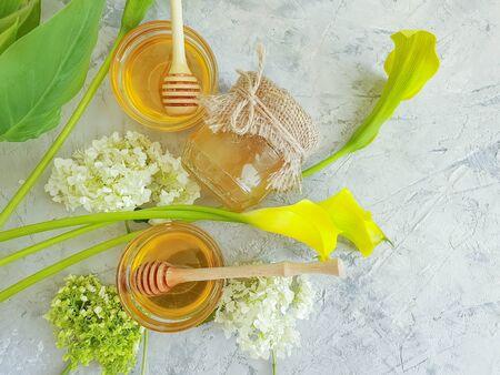 fresh honey hydrangea flower on concrete Zdjęcie Seryjne