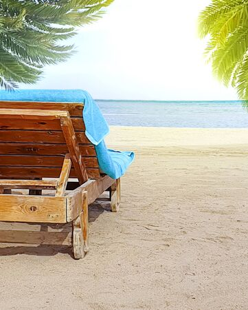 beautiful sea deck chair palm background scenic