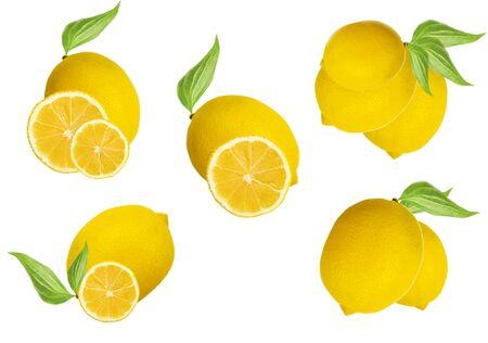 whole lemon on a white background nature