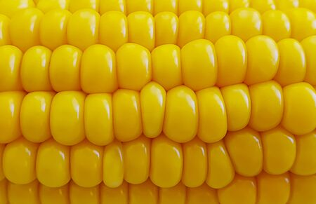 fresh corn close-up background kernel veggie summer Archivio Fotografico
