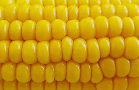fresh corn close-up background kernel veggie summer Stock Photo