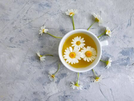 cup of tea daisy flower on concrete Stock Photo