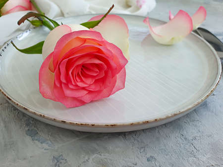 plate flower rose on a concrete background Stock Photo