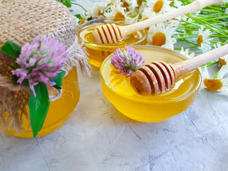fresh honey clover flower on concrete background Zdjęcie Seryjne