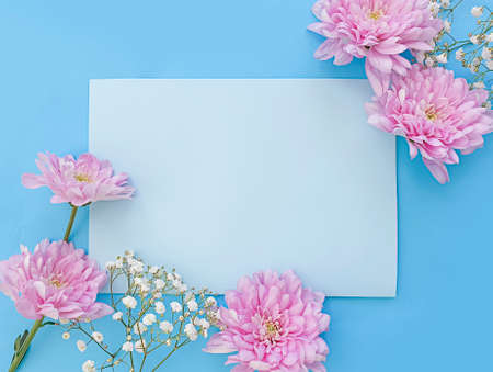 envelope, flower on a colored background 写真素材
