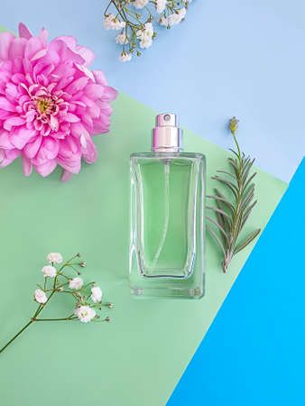 bottle perfume flower on a colored background, composition