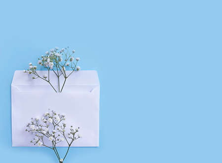envelope, flower gypsophila on a colored background