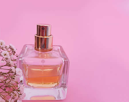 bottle perfume flower on a colored background Stock Photo