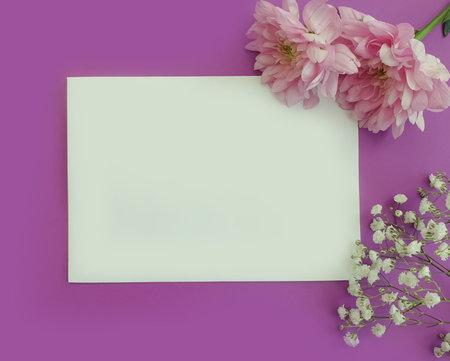 envelope, flower on a colored background Zdjęcie Seryjne