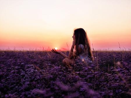 Giovane ragazza in un campo di fiori viola, rosa tramonto Archivio Fotografico - 23215521