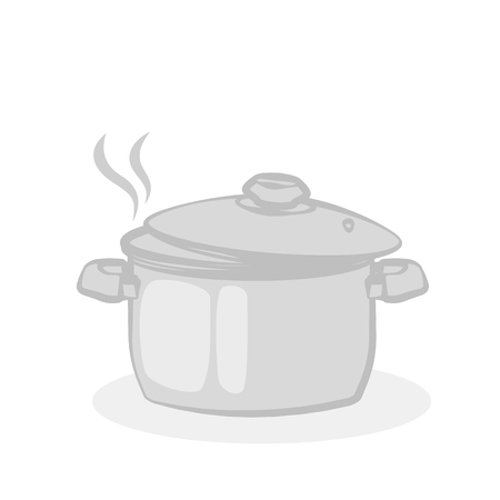 Pan. Food and cooking. Vector illustration in a style of flat design.