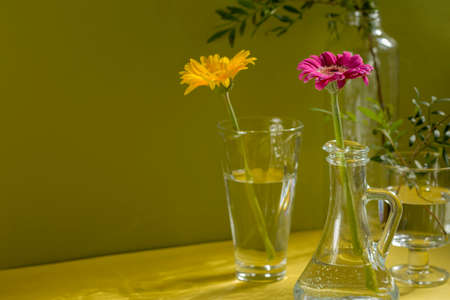 Beautiful shadows from glass vases in sunlight. Gerberas in glass bottles on a yellow background. A floral minimalistic concept in a modern interior with harsh light and shadow. Copy space.