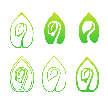 germinate: Set of green leaves design elements. Green sprout green leaves symbol vector icon set.