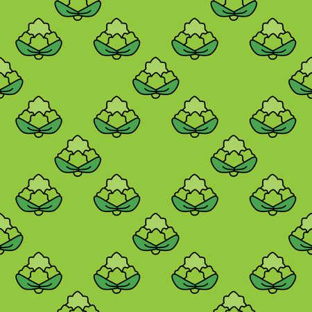 cauliflower: Seamless pattern cauliflower on a green background. Illustration