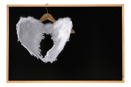White angel wings hanged on blackboard with frame Space for text Isolated on white