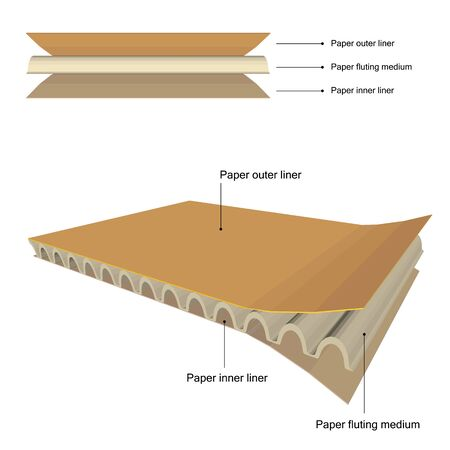 Brown cardboard with all detail isolated on white background. Ilustrace