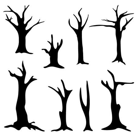 Dead trees isolated on white background. Silhouette dead tree without leaves.
