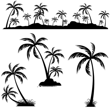 Set of palm trees. Coconut palm trees isolated on white background. Ilustrace