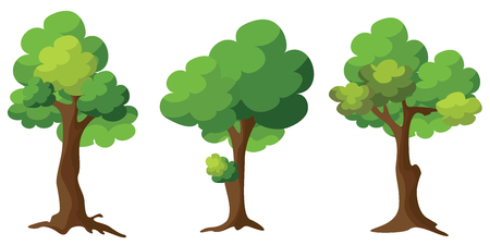 Set of Trees on white background. Cartoon of green trees design.