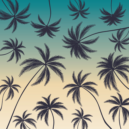 Coconut palm trees on colorful background. Beautiful palm trees.