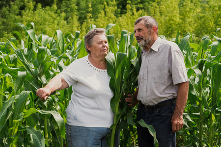 happy senior couple standing on the green field Stock Photo