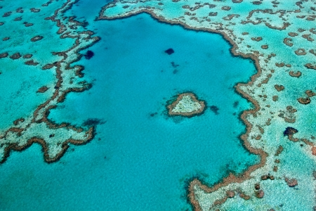 Heart Reef  Great Barrier Reef, Whitsundays Australia 版權商用圖片 - 20465007